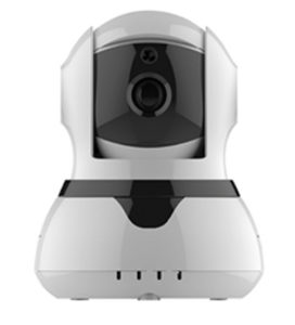 IP Camera With Alarm Function
